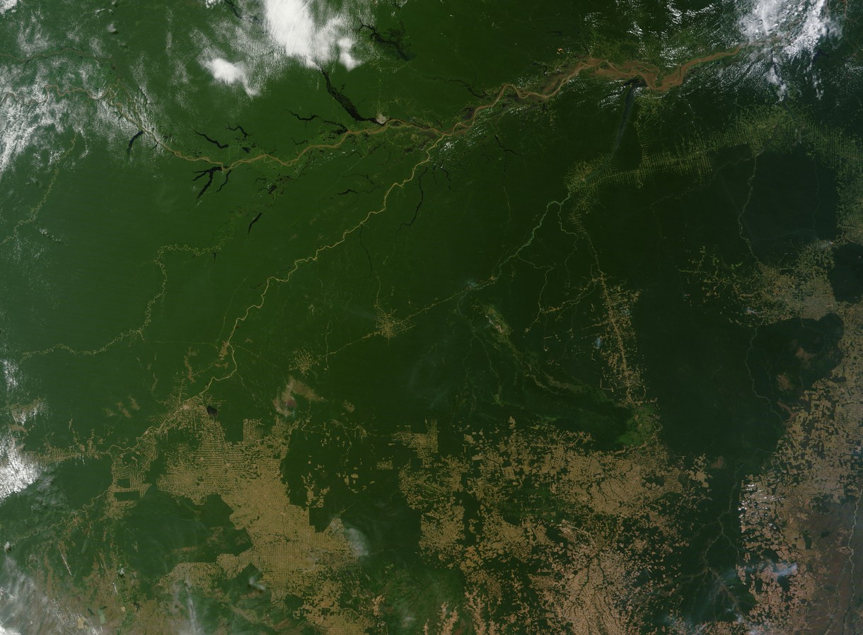 land clearing in amazon rainforest They're trying to reach a clearing they've seen on satellite images   deforestation in brazil, which is home to more than half of the  he says he  wants landholders to be able to deforest 50% of their land in the amazon.