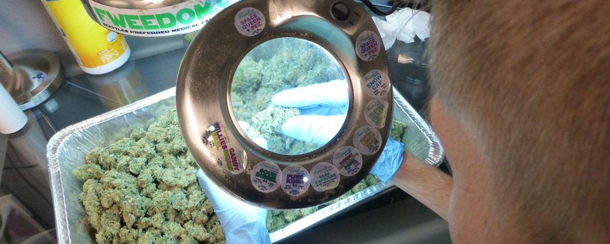 Legal Weed in Washington State Has Been Completely Screwed Up