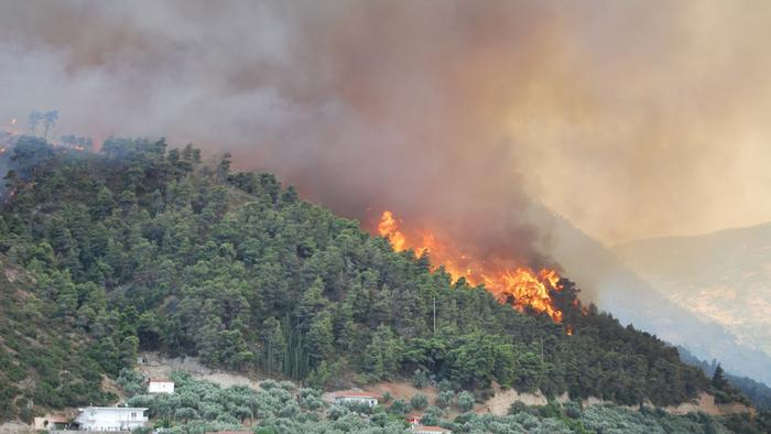 Expert Advice on Climate Change: Get Used to Wildfires