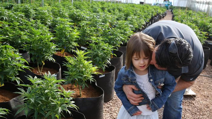 Bill in US Congress Would Legalize 'Charlotte's Web' Medical Marijuana