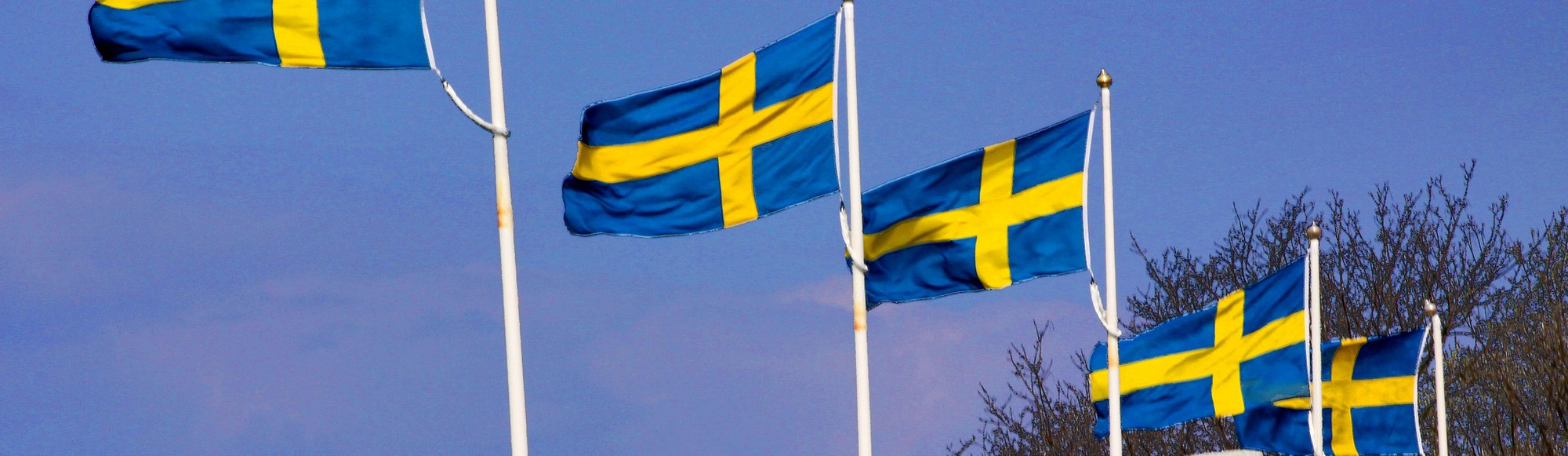 Sweden Plans to Thwart Racism By Eliminating the Mention of Race From Its Laws