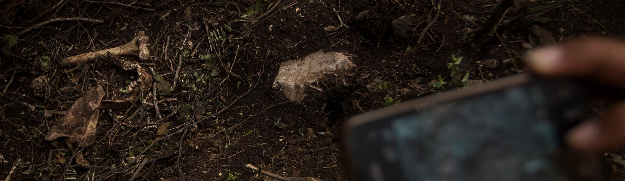 Mass Graves Dot Hillsides Around Iguala as Search for Missing Students Continues