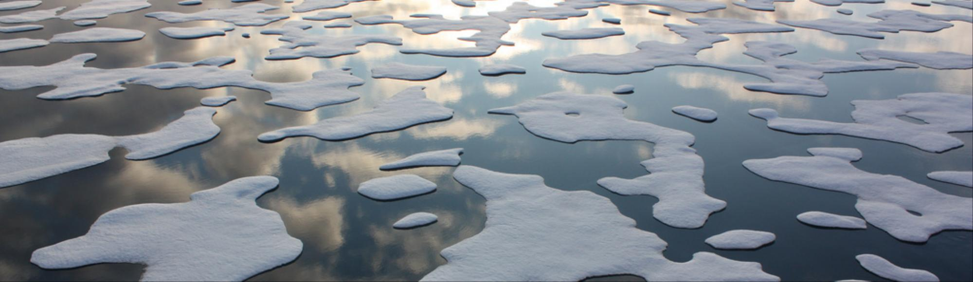 Arctic Sea Ice Loss Driving Dramatic Temperature Increase in Alaska