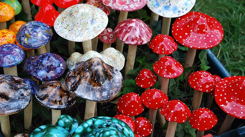 Psychedelic Mushrooms Are Being Studied to Help Ease Depression and Anxiety