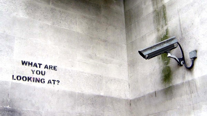 Who's Afraid of the Surveillance State?