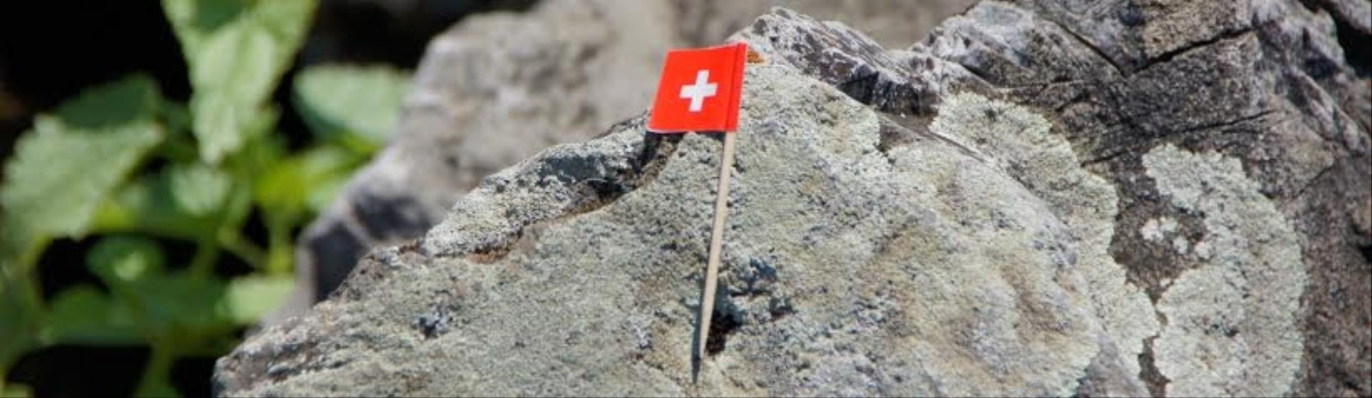 Surprise Move By Swiss National Bank Sends Currency Soaring and Stocks Tanking