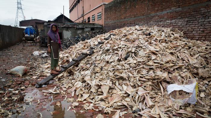 Tanneries in Bangladesh Are Spewing Toxic Waste and Making Workers Sick