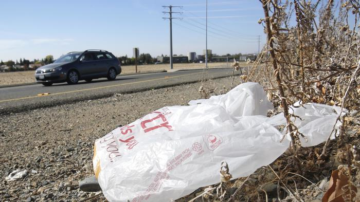 This Group Wants to Stop California from Banning Plastic Bags
