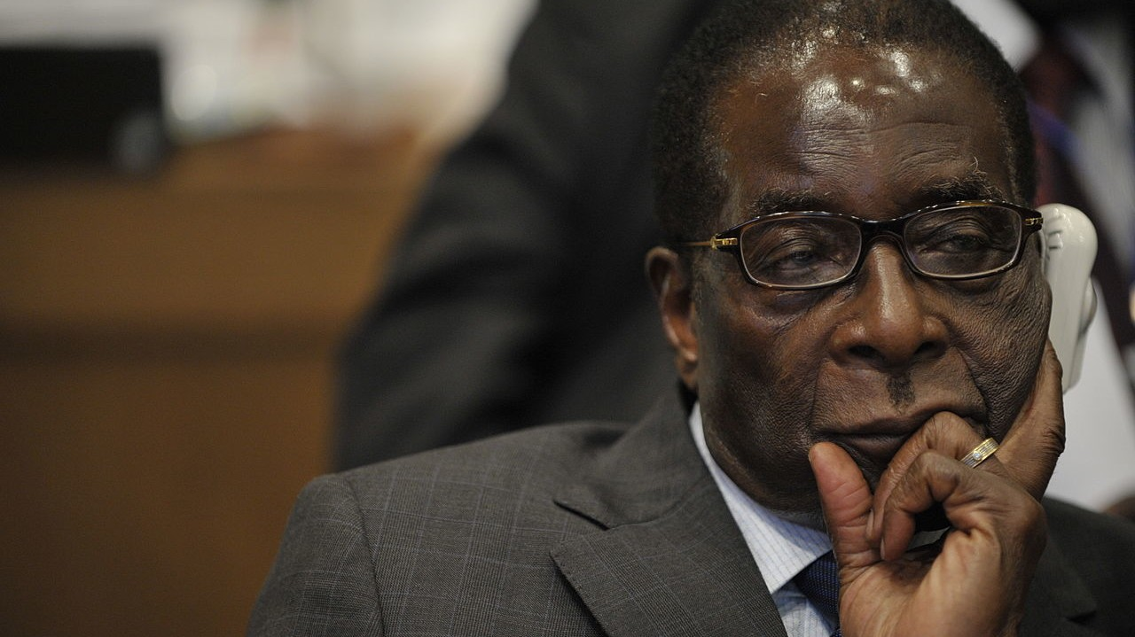 Guests Feast on Elephant Meat at Robert Mugabe's $1 Million Birthday Party