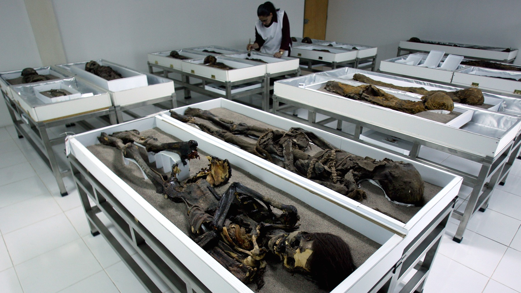 Here's Why These Ancient Mummies Are Oozing Black Goo