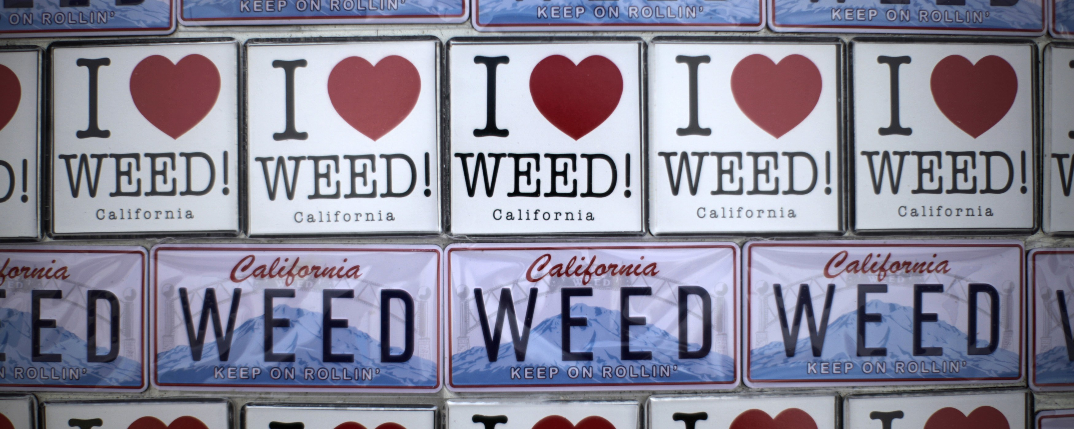 Growers in California's Emerald Triangle Are Changing Their Minds About Legal Weed