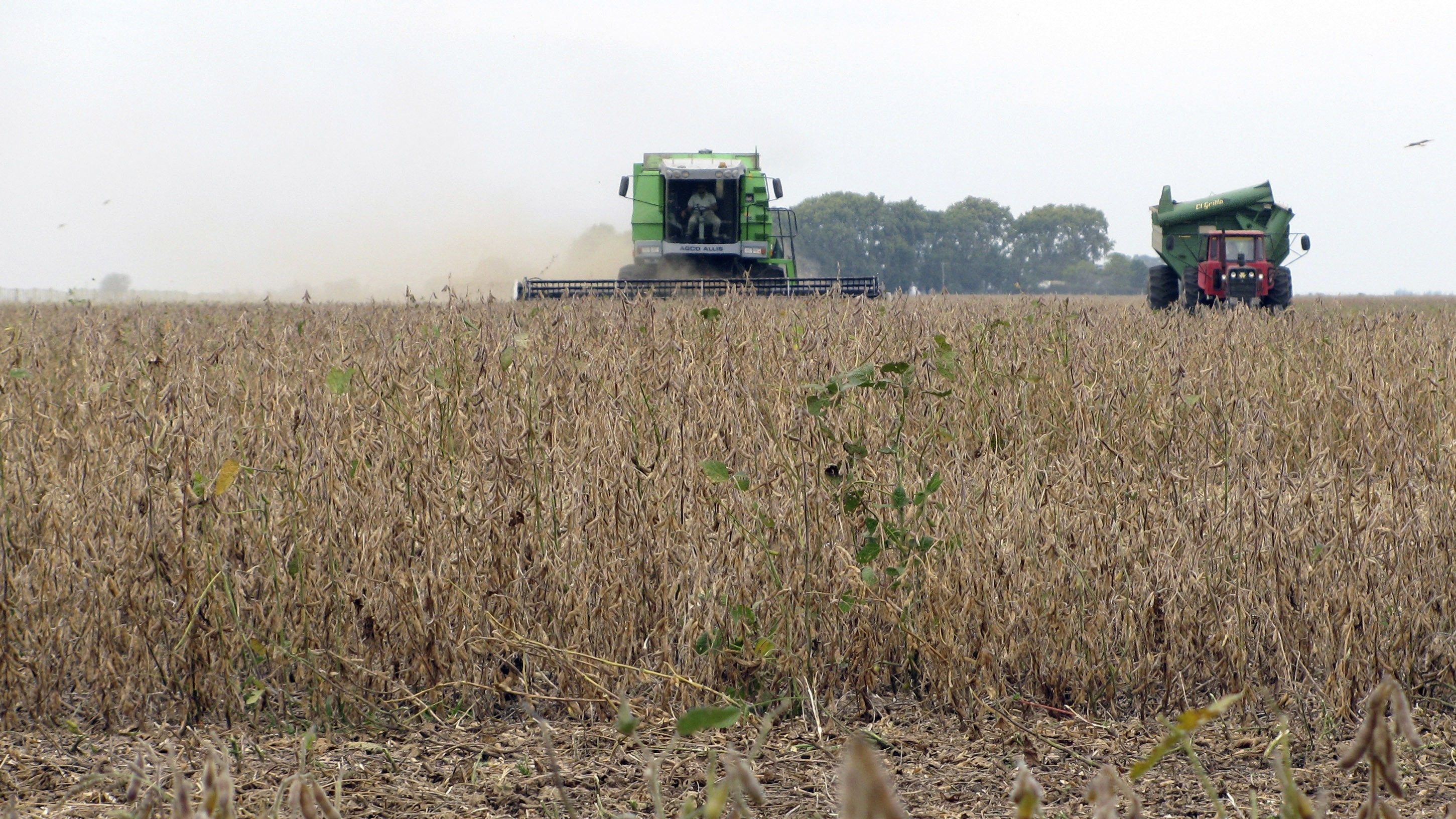 The Most Widely Used Herbicide in the United States Could Cause Cancer in Humans, Says a World Health Organization Study