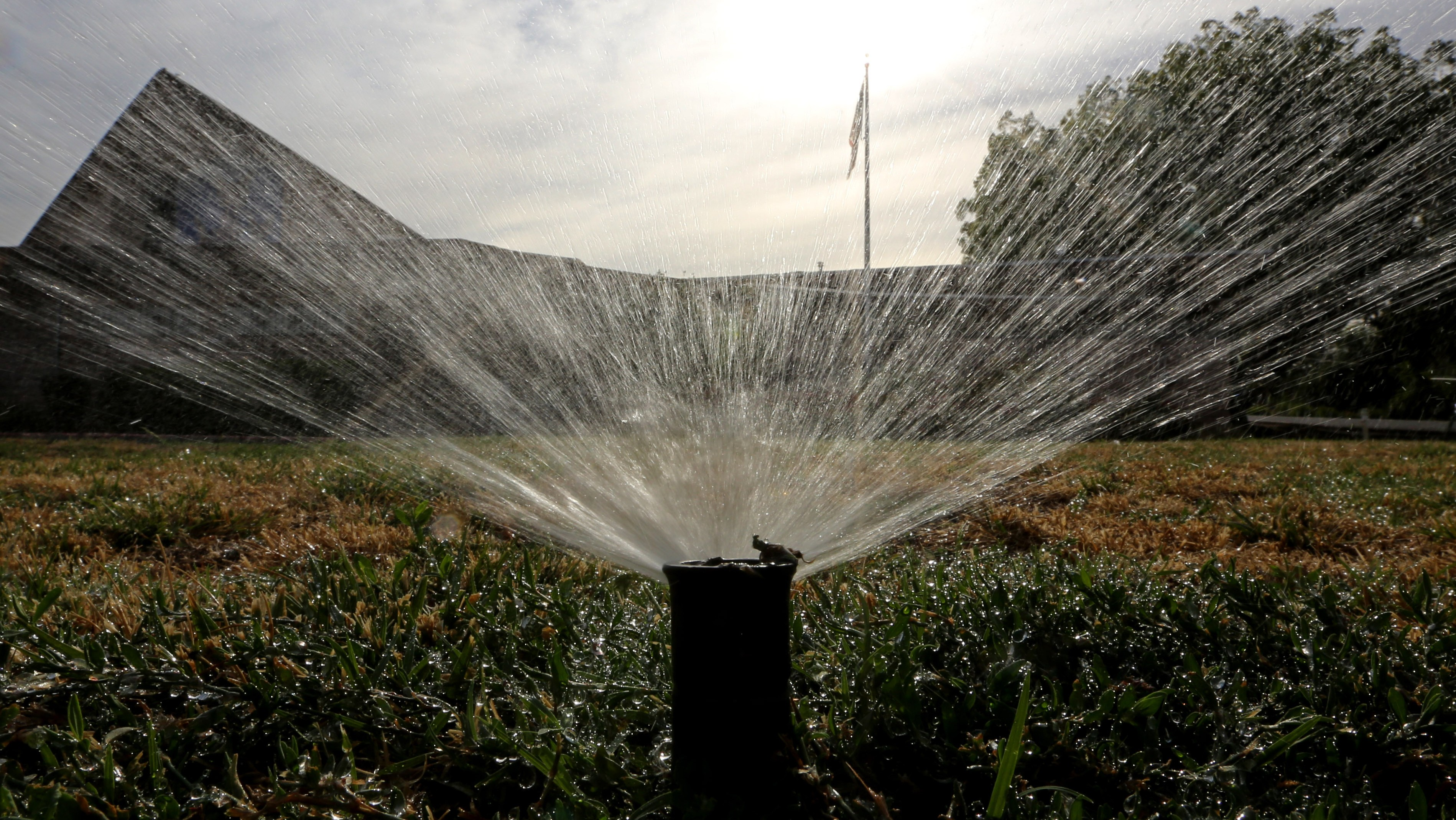 Californians Just Aren't Getting Their Water Use Under Control