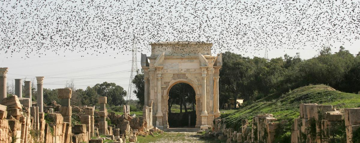 Libyan Archaeologists Battle to Save Ancient Heritage Sites