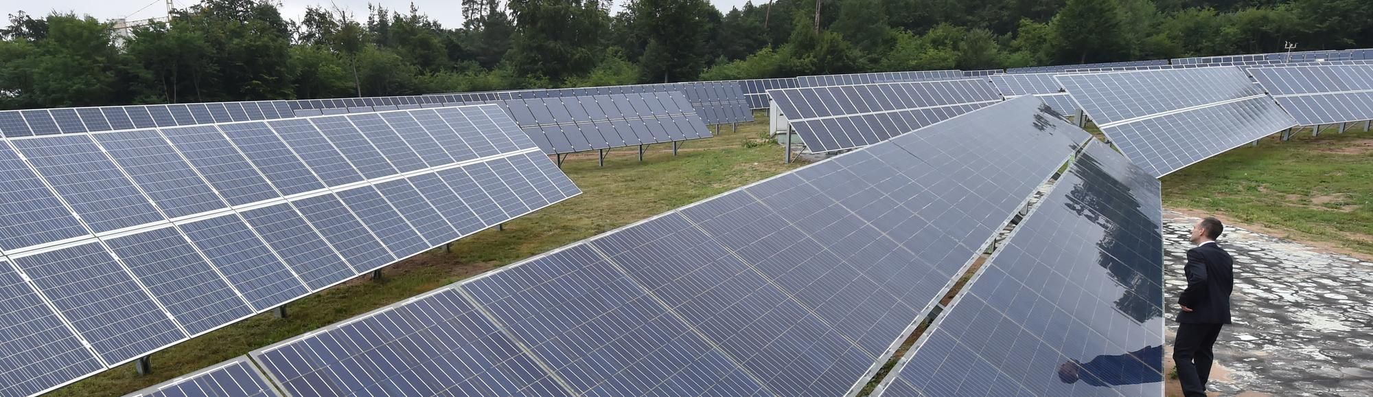 Thieves Are Looting Germany's Solar Farms