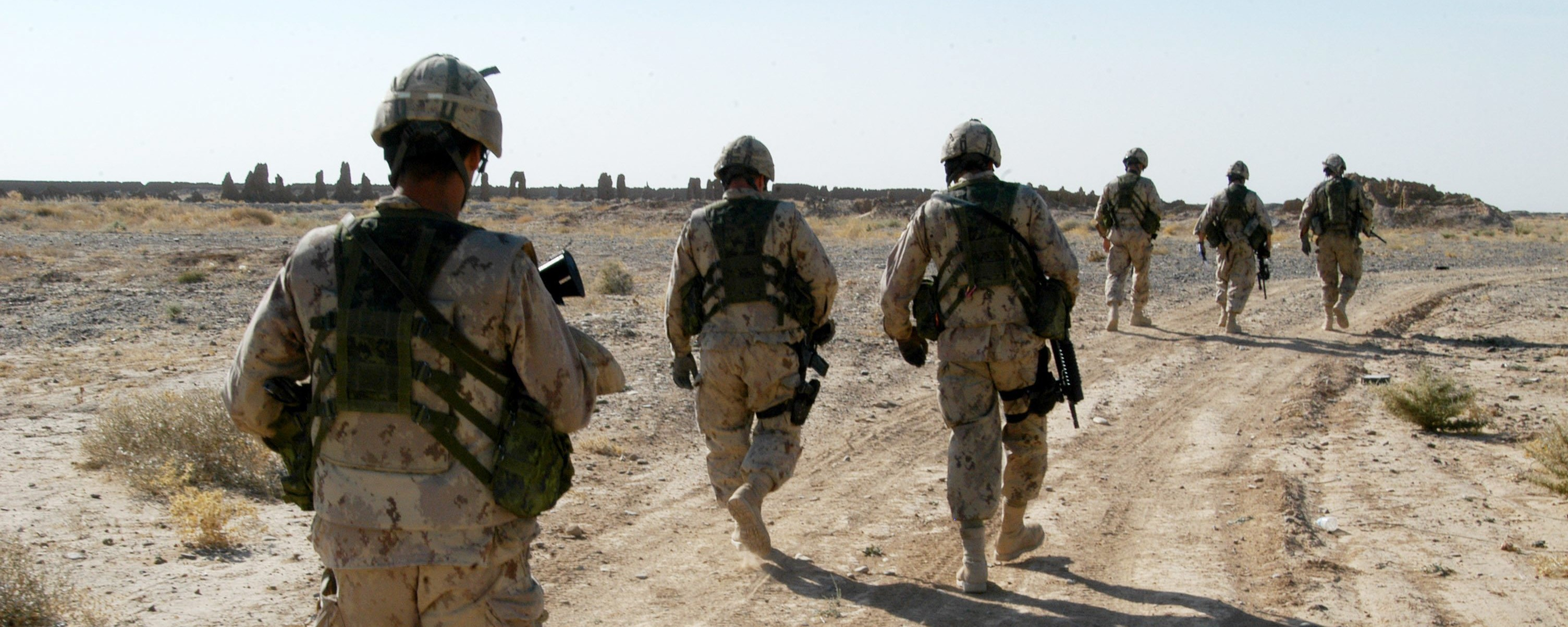 The Canadian Military Wants to Use Stem Cells to Help Its Soldiers Heal