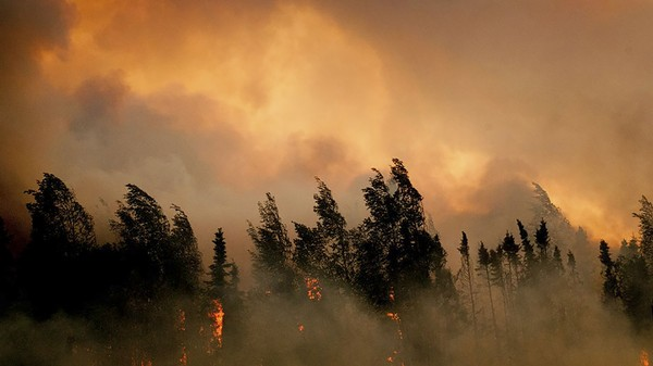 Here's Why Alaska's Wildfires Are Really Bad News for Everyone