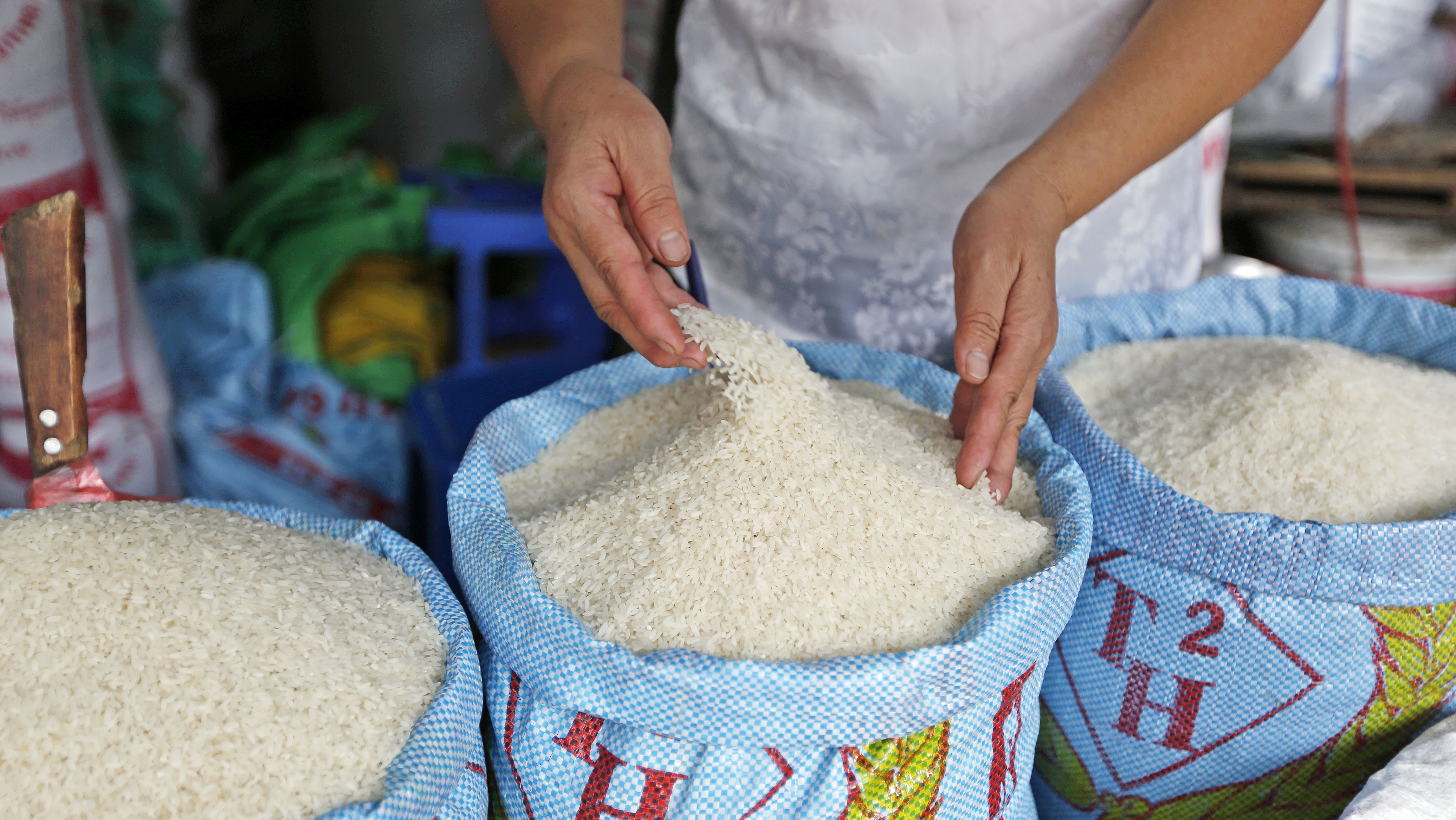 These Scientists Think Genetically Modified Rice Can Help Solve the Climate Crisis