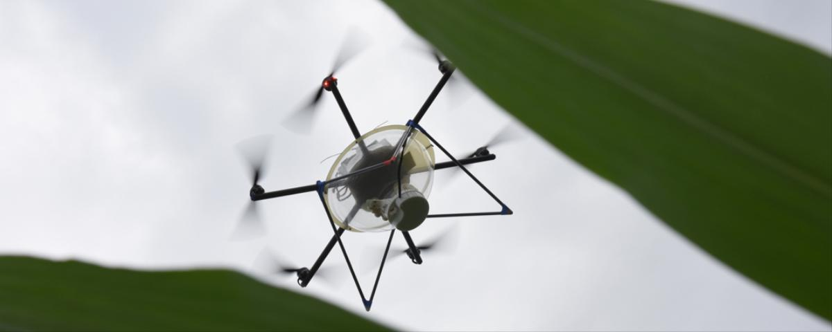 FAA Approves Corporation's Use of Drones To Collect Data, Prompting Protest from Privacy Advocates