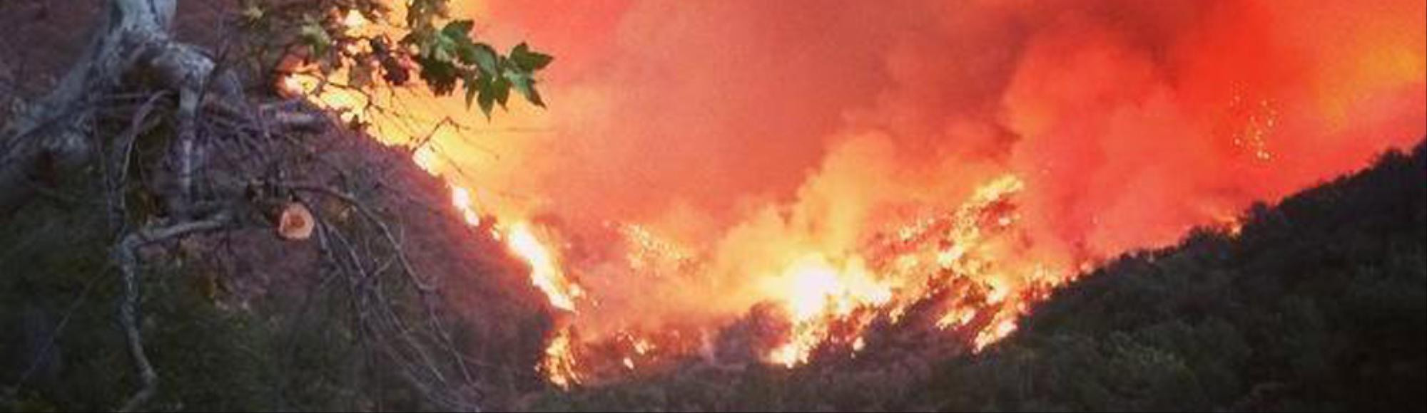 Here's How Insane This Year's Fire Season Has Been