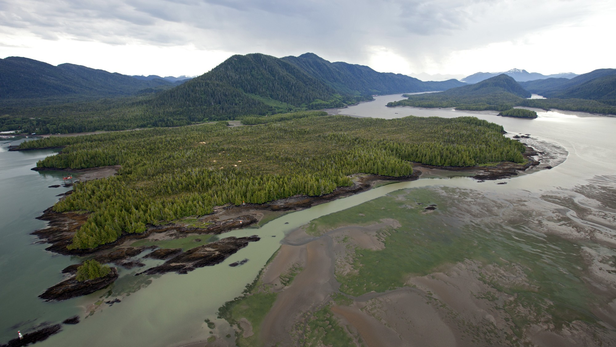 Energy and Forestry Firms Say Indigenous People Should Have Power to Nix Projects in Canada