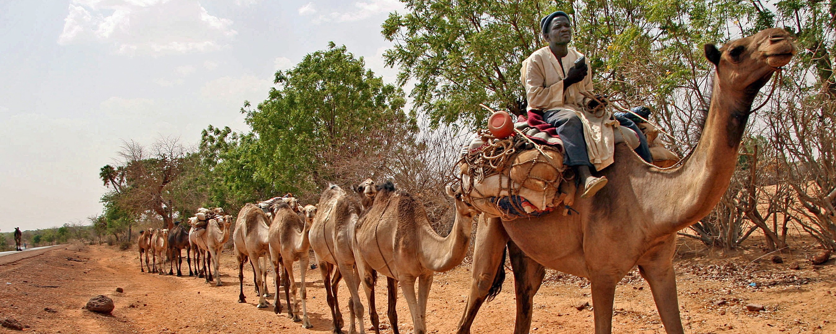 Northern Nigeria Bans Cars, Bicycles, and Camels to Thwart Boko Haram During Eid