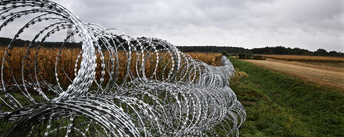 Razor Wire, Soldiers, and Mud: Hungary Is Sealing Itself Off From ...