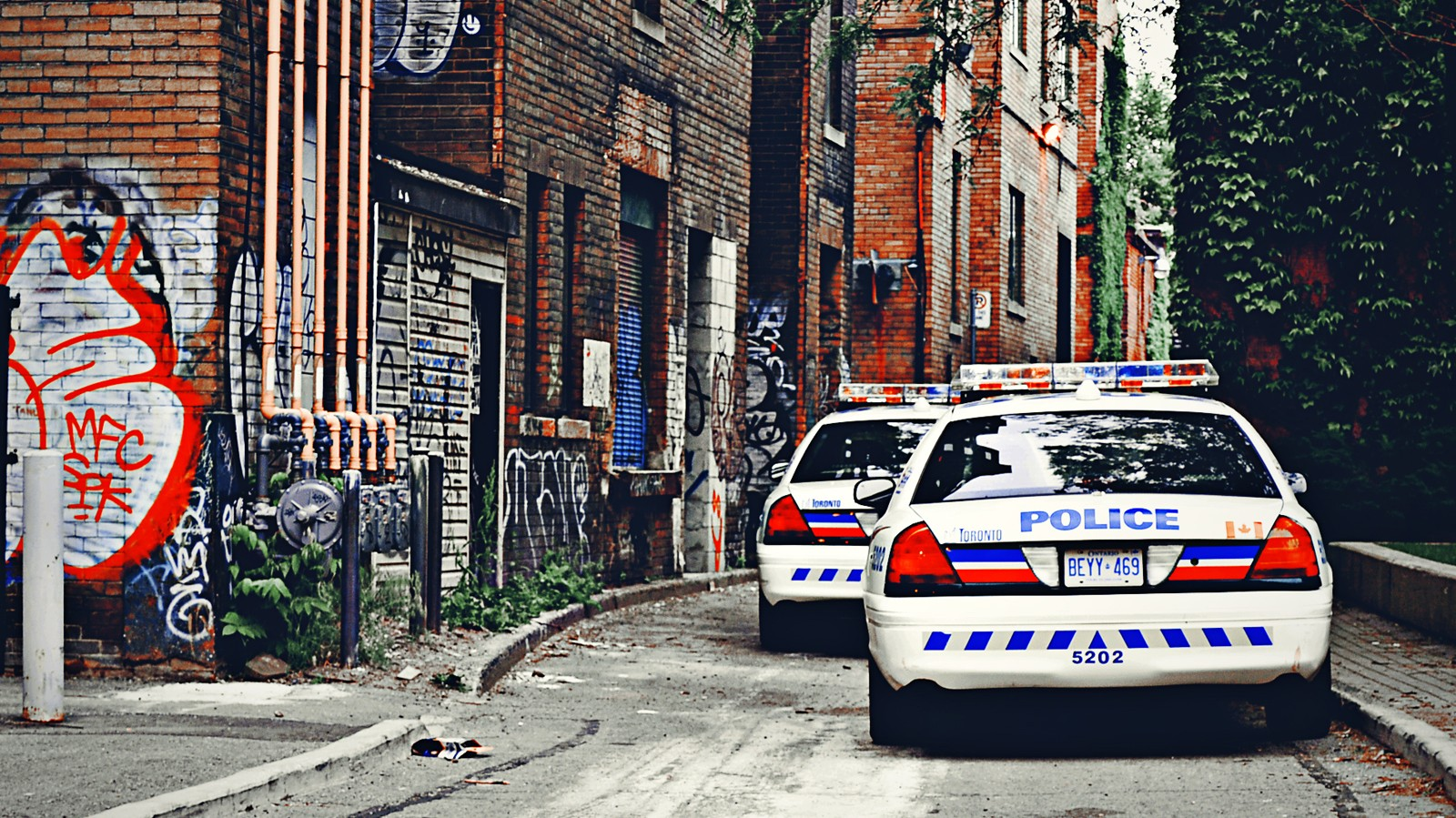 Ontario Moves to Ban Random Police Stops — And Issue Receipts for All Else