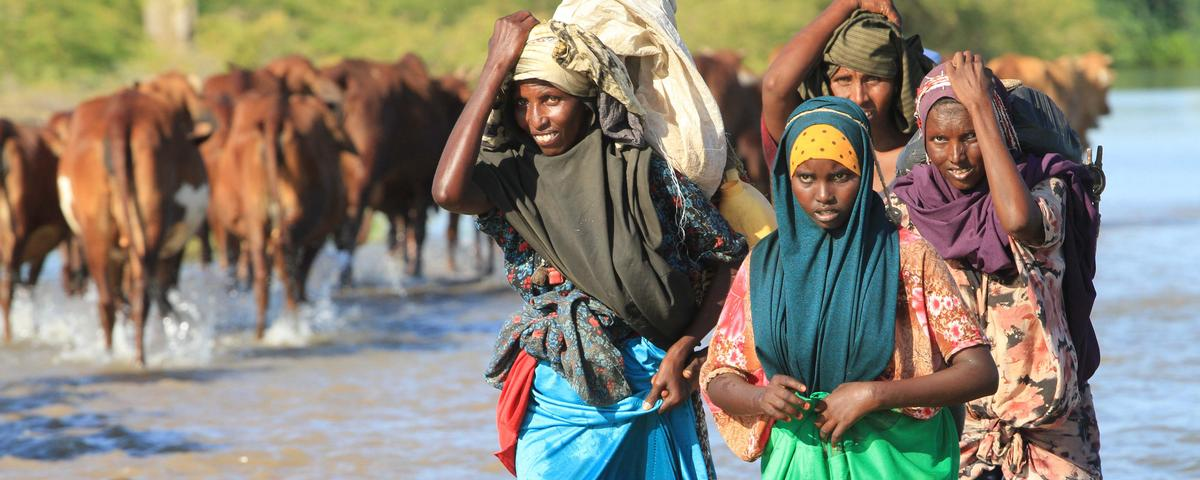 Thousands Flee Flash Floods in Somalia as El Niño Intensifies Rainy Season