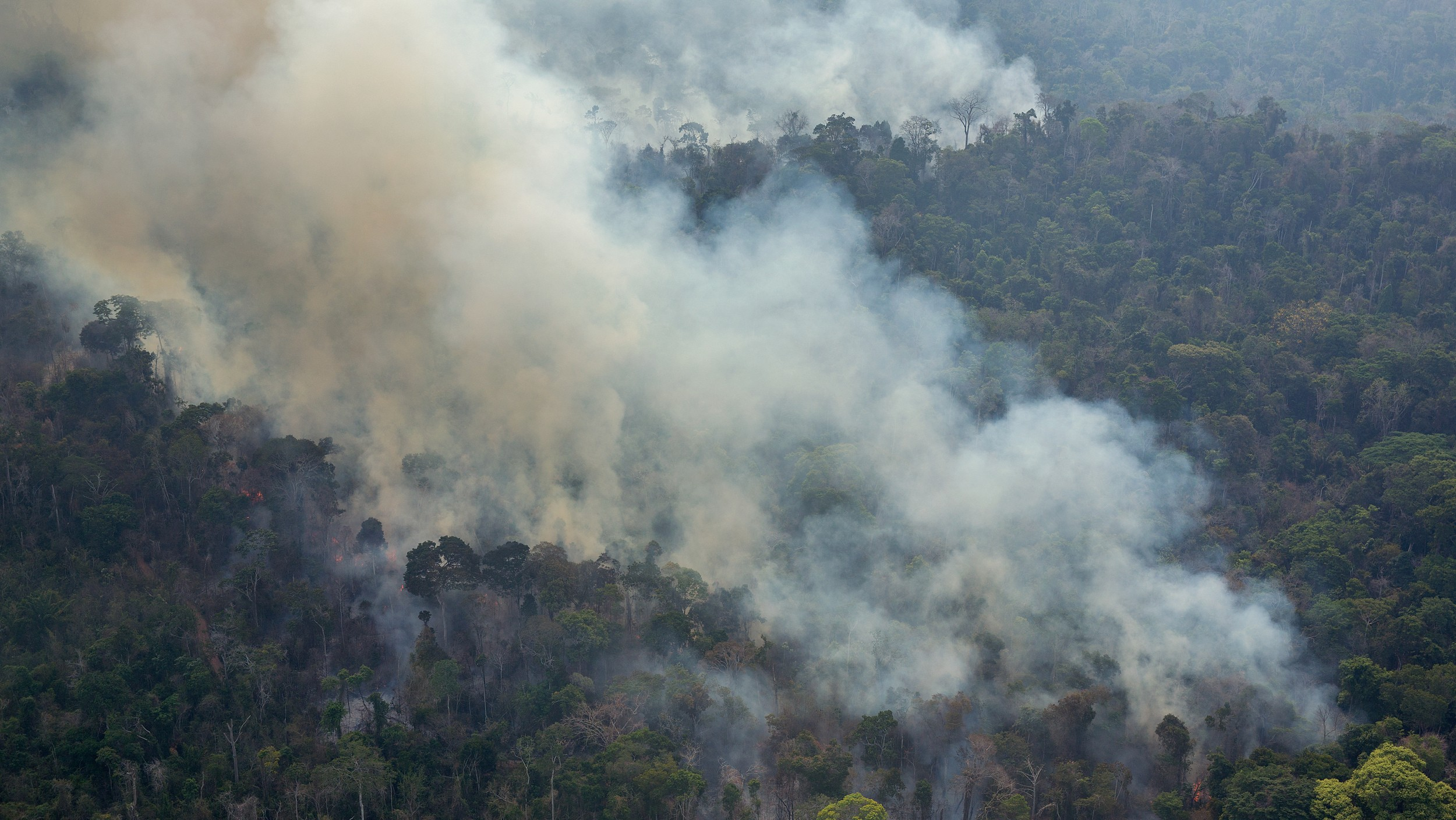 A Huge Fire in the Amazon Threatens Thousands of Indigenous People and an Uncontacted Tribe