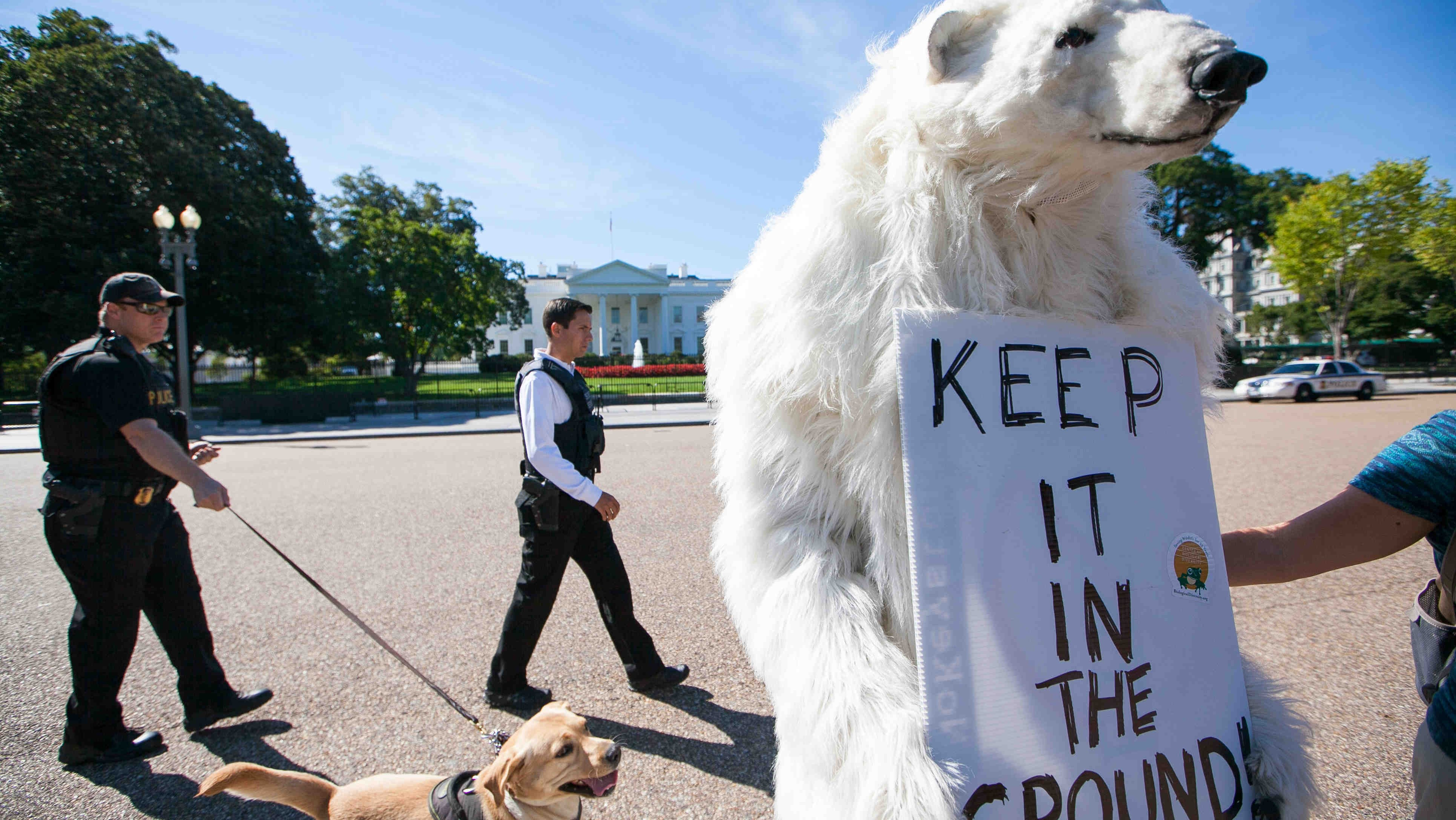 Climate Activists Say Keystone XL Was Just the Beginning