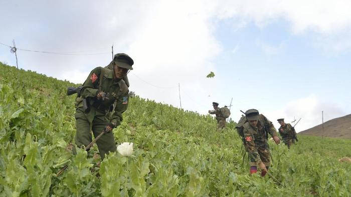 On Patrol With Myanmar Rebels Fighting Both the Army and Drug Addiction