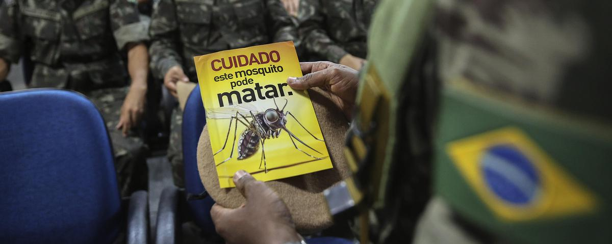 Here's What You Should Know About the Zika Virus
