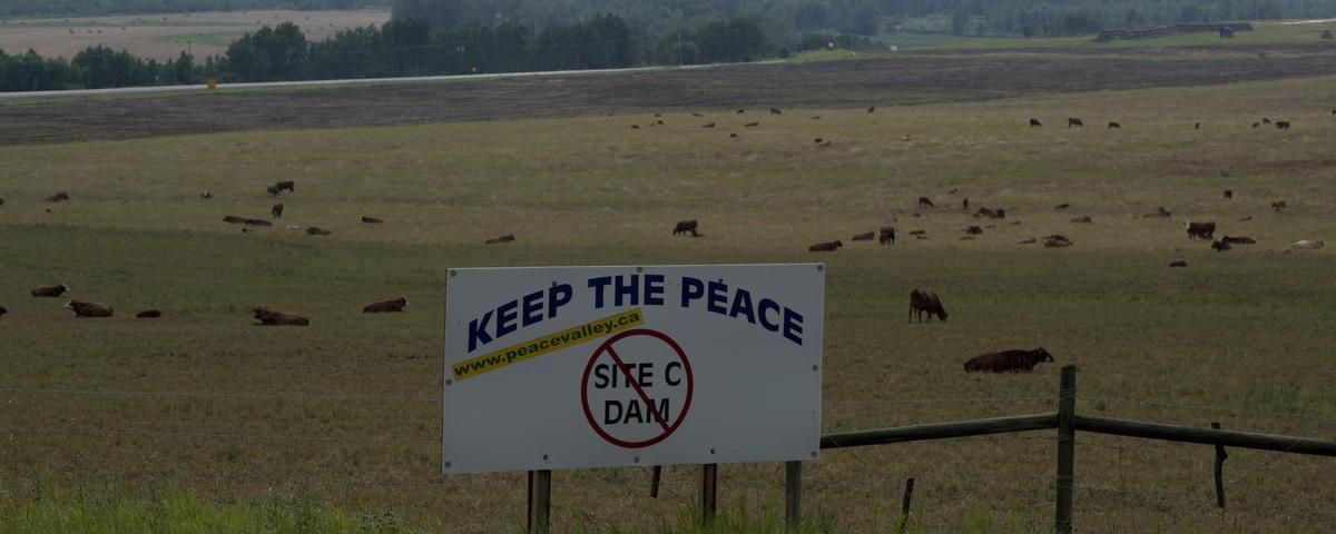 Protesters Vow to Stay Put at Controversial Canadian Dam After Court Rules Against Them