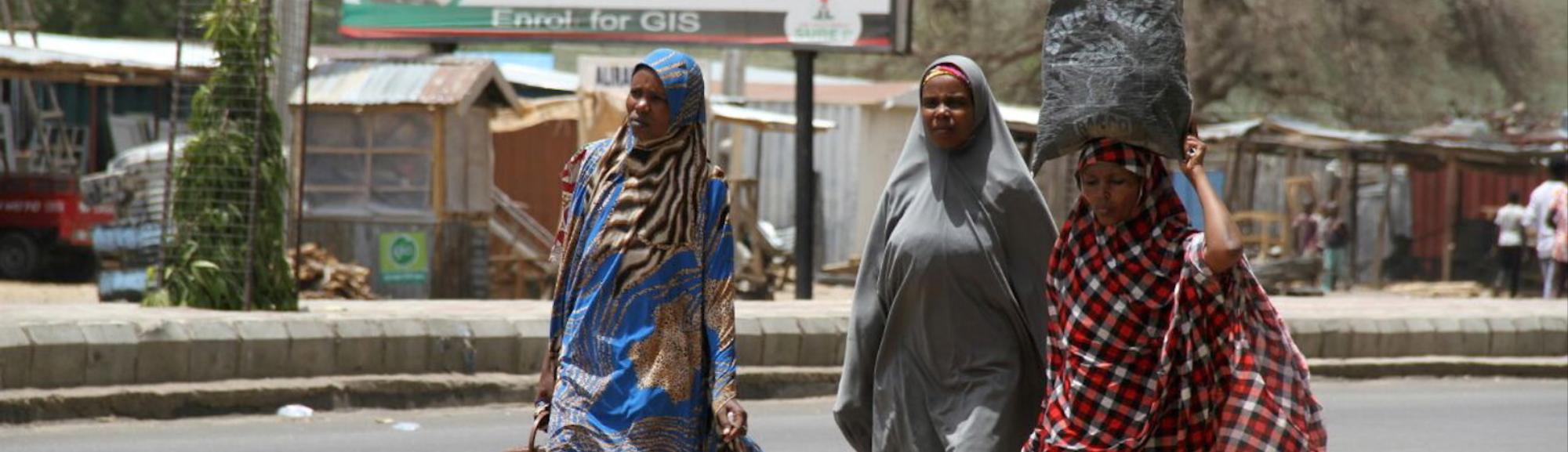 Women Carry Out Twin Suicide Bombing During Morning Prayers in Northeast Nigeria