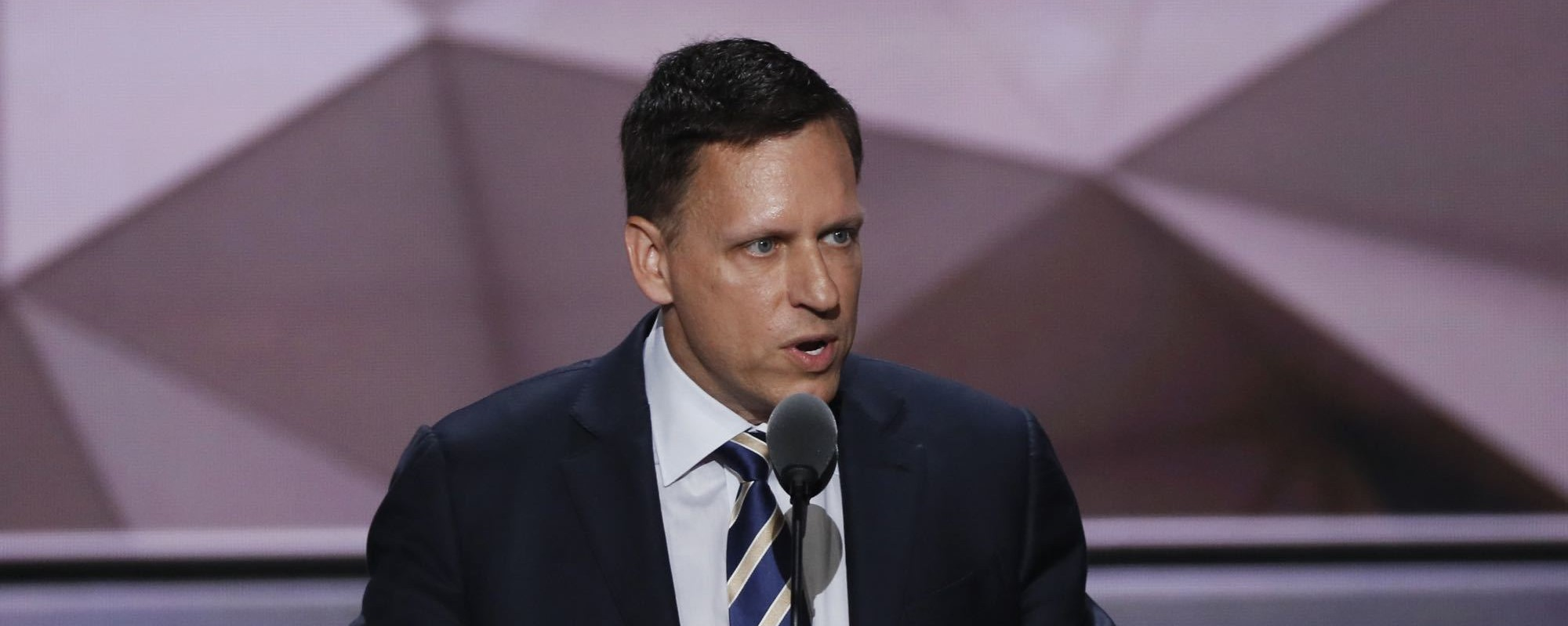 Most Americans don't care that Peter Thiel crushed Gawker