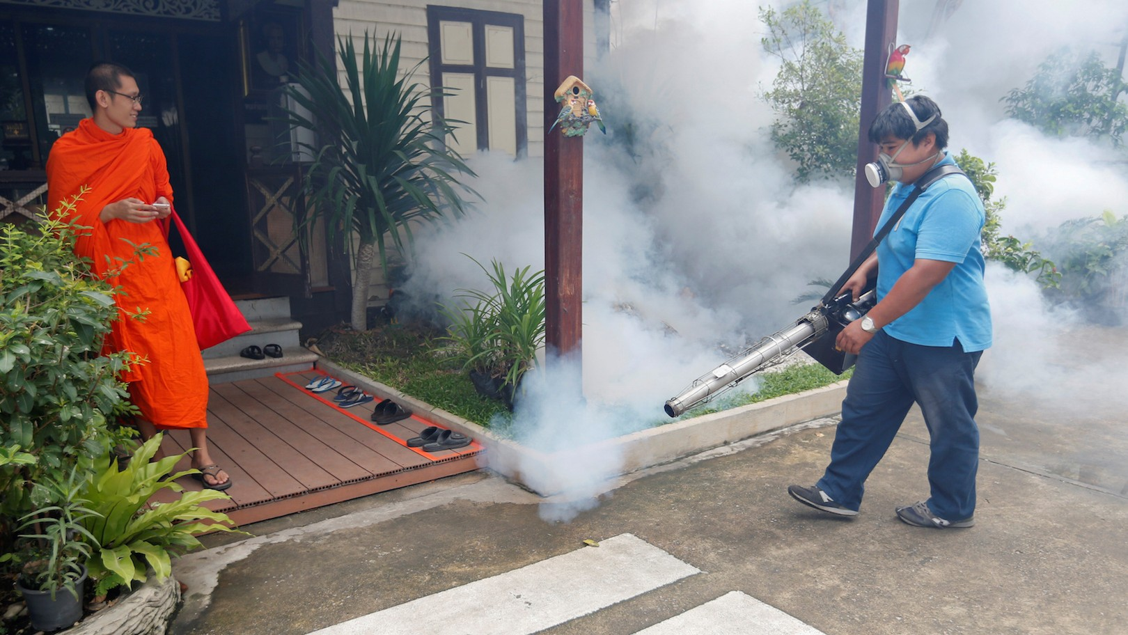 Thailand confirms first microcephaly cases linked to Zika