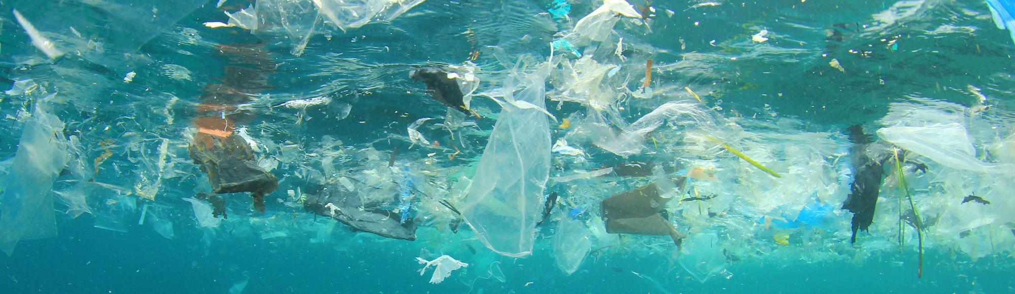 Resultado de imagen para basura en el oceano