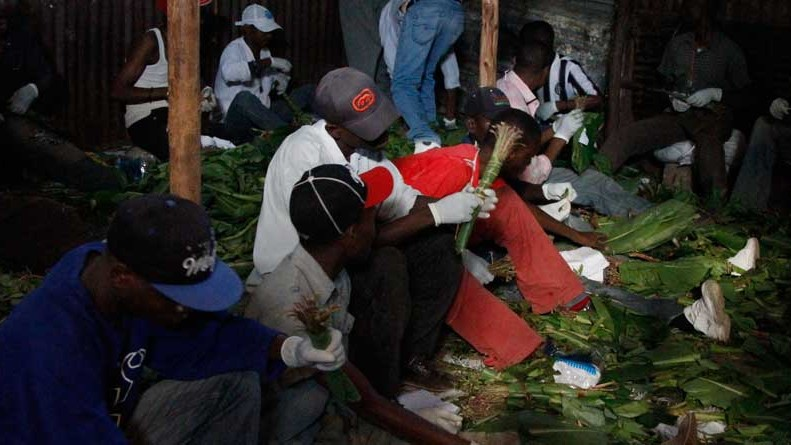 Khat Power: The Latest War On Drugs