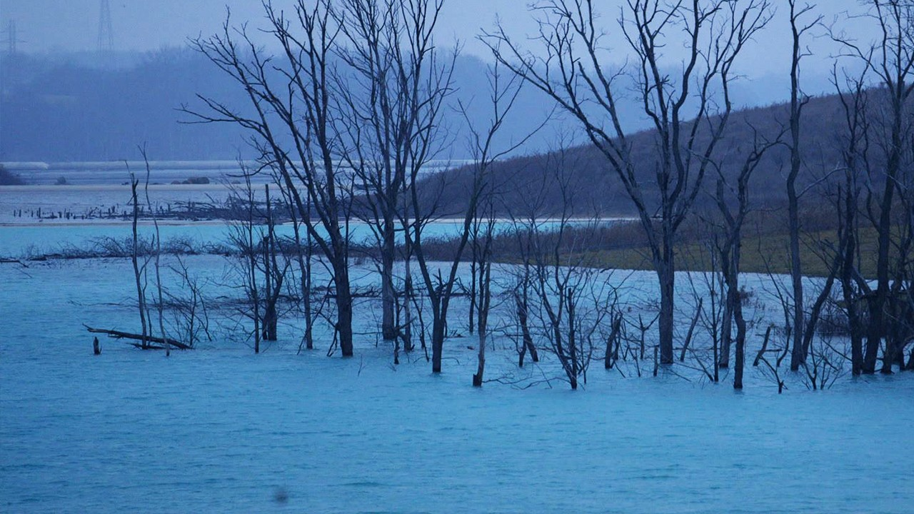 This Lake Shouldn't Be Blue (Excerpt from 'Toxic Waste in the US: Coal Ash')